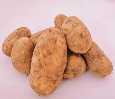 Kartupeļi (sarkanie/dzeltenie)